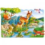 Puzzle  Castorland-02177