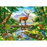 Puzzle  Castorland-030408
