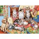 Puzzle  Castorland-030439