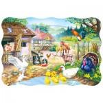 Puzzle  Castorland-03310