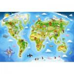 Puzzle  Castorland-040117