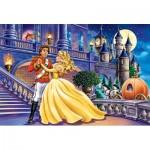 Puzzle  Castorland-040254