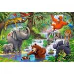 Puzzle  Castorland-040315