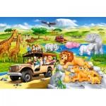 Puzzle  Castorland-040322