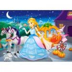 Puzzle  Castorland-06908