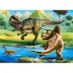 Puzzle  Castorland-070084