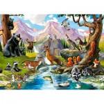 Puzzle  Castorland-070091