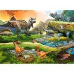 Puzzle  Castorland-111084