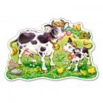 Puzzle  Castorland-120062