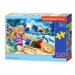 Puzzle  Castorland-13388