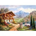 Puzzle  Castorland-200511