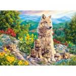 Puzzle  Castorland-222087