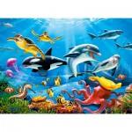 Puzzle  Castorland-222094