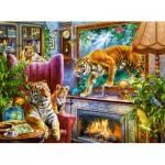 Puzzle  Castorland-300556