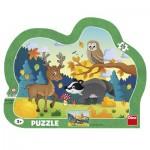 Puzzle  Dino-31138