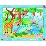 Puzzle  Dino-32223