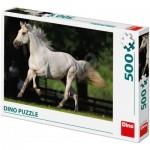 Puzzle  Dino-50233
