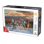 Puzzle  Deico-Games-76052