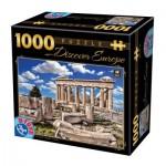 Puzzle  Dtoys-65995-DE05