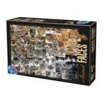 Puzzle  Dtoys-74331-AF02-(75260)