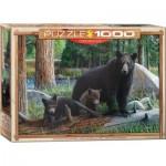 Puzzle  Eurographics-6000-0793