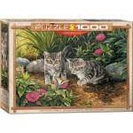 Puzzle  Eurographics-6000-0796