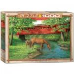 Puzzle  Eurographics-6000-0834