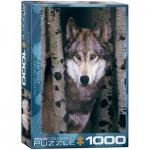 Puzzle  Eurographics-6000-1244
