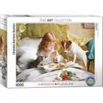 Puzzle  Eurographics-6000-5329