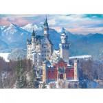 Puzzle  Eurographics-6000-5419