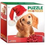 Puzzle  Eurographics-8104-0670