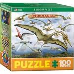 Puzzle  Eurographics-8104-0680