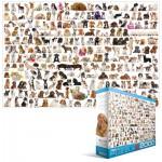 Puzzle  Eurographics-8220-0581