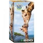 Puzzle  Eurographics-8251-0294