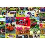 Puzzle  Grafika-Kids-02107