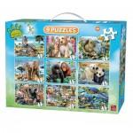 Puzzle  King-Puzzle-05327
