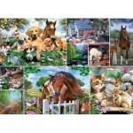 Puzzle  King-Puzzle-55871