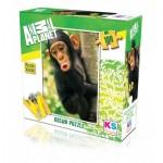 Puzzle  KS-Games-10103