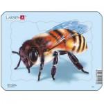 Puzzle  Larsen-Z2-2