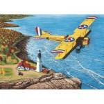 Puzzle  Cobble-Hill-80041