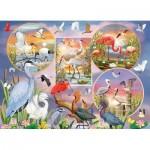 Puzzle  Cobble-Hill-80219