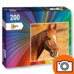 Puzzle  PP-Photo-200