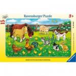 Puzzle  Ravensburger-06046