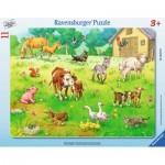 Puzzle  Ravensburger-06143