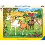 Puzzle  Ravensburger-06646