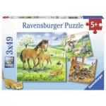 Puzzle  Ravensburger-08029