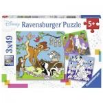 Puzzle  Ravensburger-08043