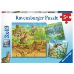 Puzzle  Ravensburger-08050