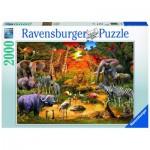 Puzzle  Ravensburger-16702