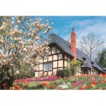 Puzzle  The-House-of-Puzzles-2643